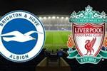 موعد والقناة الناقلة لمباراة ليفربول وبرايتون في الدوري الإنجليزي اليوم