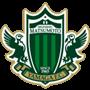 ماتسوموتو ياماغا