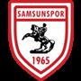سامسون-سبور
