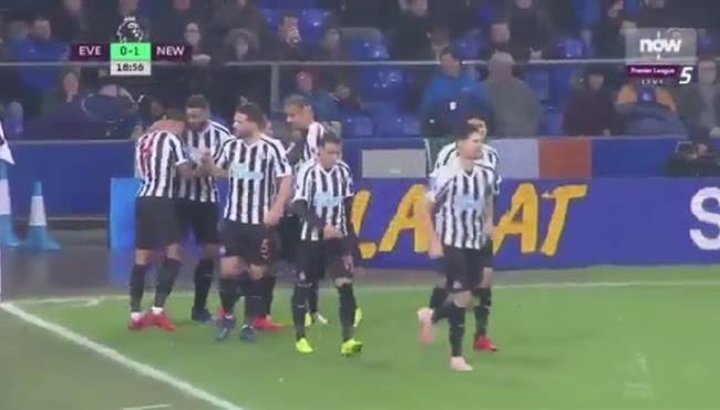 اهداف مباراة  ايفرتون ونيوكاسل (1-1) الدوري الانجليزي